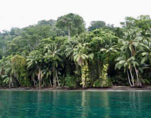 Kenias Reiseblog
